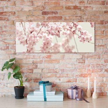 Quadro in vetro - Danza di fiori di ciliegio