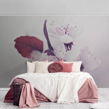 Carta da parati metallizzata - Ramo di fiori di ciliegio in rosa antico