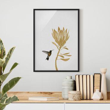 Poster con cornice - Colibrì e fiore tropicale dorato