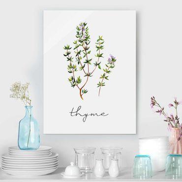 Quadro in vetro - Illustrazione di erbe aromatiche timo
