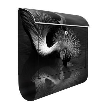 Cassetta postale - Inchino di una gru coronata in bianco e nero