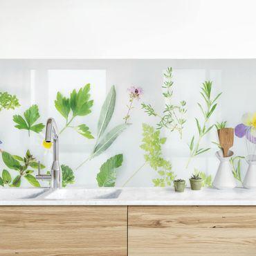 Rivestimento cucina - Fiori ed aromi II
