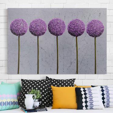 Stampa su tela - Allium Ball Flower - Orizzontale 3:2