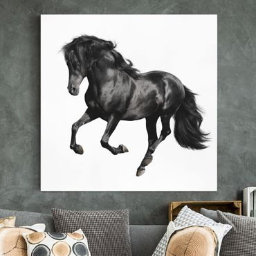 Stampa su tela - Arabian Stallion - Quadrato 1:1
