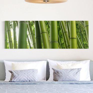 Stampa su tela - Bamboo Trees - Panoramico