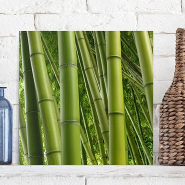 Stampa su tela - Bamboo Trees - Quadrato 1:1