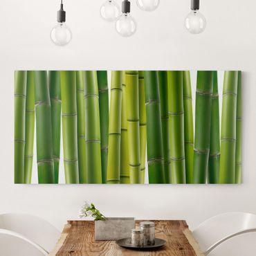 Stampa su tela - Bamboo Plants - Orizzontale 2:1