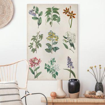 Stampa su tela - Manifesto Botanical I - Verticale 2:3