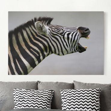 Stampa su tela - Rawling Zebra - Orizzontale 3:2