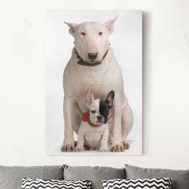 Stampa su tela Bull Terrier and Friend - Verticale 2:3