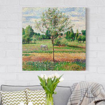 Stampa su tela - Camille Pissarro - Meadow with Grey Horse, Eragny - Quadrato 1:1