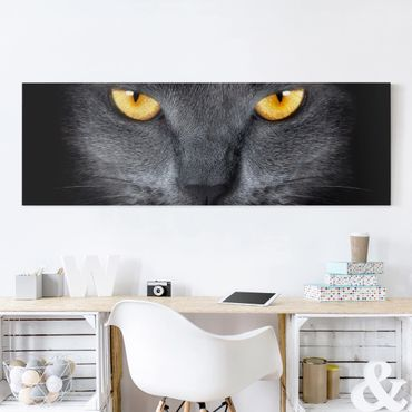 Stampa su tela - Cats Gaze - Panoramico