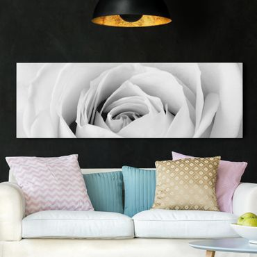 Stampa su tela - Close Up Rose - Panoramico