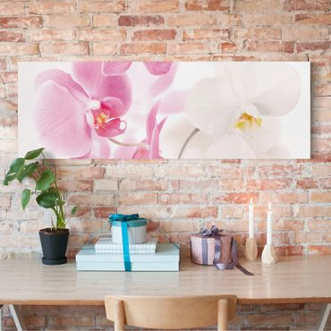 Stampa su tela - Delicate Orchids - Panoramico