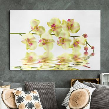 Stampa su tela - Dreamy Orchid Waters - Orizzontale 3:2