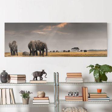 Stampa su tela - Elephant Savanna - Panoramico