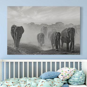 Stampa su tela - Branco di Elefanti - Orizzontale 3:2