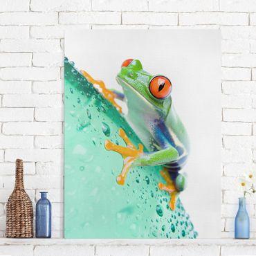 Stampa su tela - Frog - Verticale 3:4