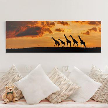 Stampa su tela - Cinque Giraffe - Panoramico