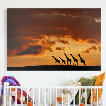 Stampa su tela - Cinque Giraffe - Orizzontale 3:2