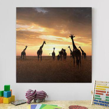 Stampa su tela - Famiglia Giraffa - Quadrato 1:1