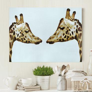 Stampa su tela - Giraffes In Love - Orizzontale 4:3