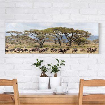 Stampa su tela - Herd Of Wildebeest In The Savannah - Panoramico