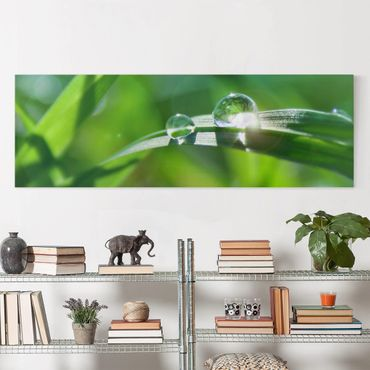 Stampa su tela - Green Ambiance II - Panoramico