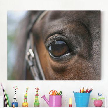 Stampa su tela - Horse Eye - Orizzontale 4:3