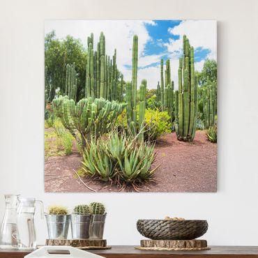 Stampa su tela - Cactus Landscape - Quadrato 1:1