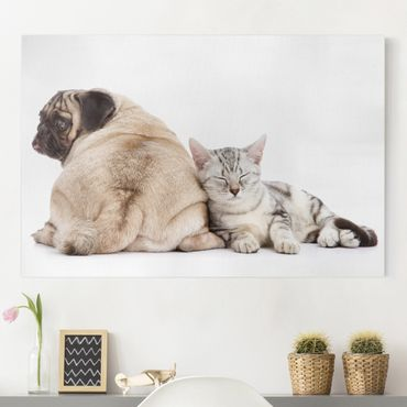 Stampa su tela - Puggie And Kitten - Orizzontale 3:2