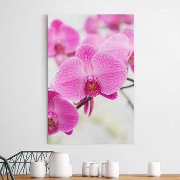 Stampa su tela Close orchid - Verticale 2:3