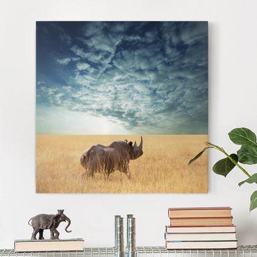 Stampa su tela - Rhino In The Savannah - Quadrato 1:1