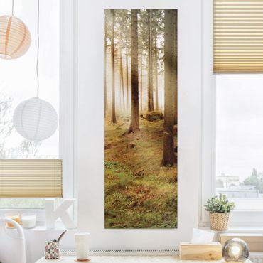Stampa su tela - No.CA48 Morningforest - Pannello