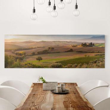 Stampa su tela - Uliveto in Toscana - Panoramico