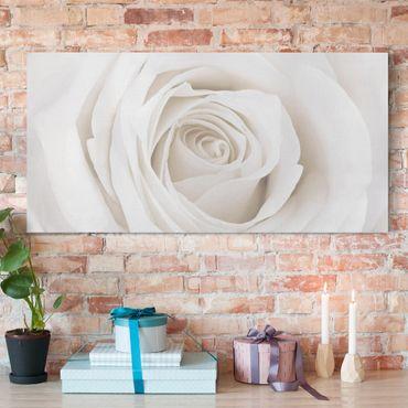 Stampa su tela - Pretty White Rose - Orizzontale 2:1