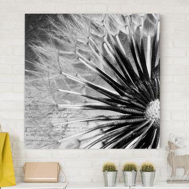 Stampa su tela - Dandelion Black & White - Quadrato 1:1