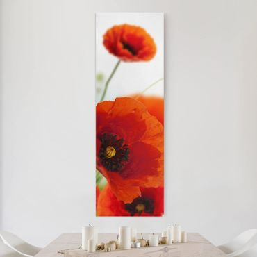 Stampa su tela - Radiant Poppies - Pannello