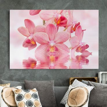 Stampa su tela - Pink orchids on water - Orizzontale 3:2