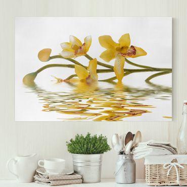 Stampa su tela - Saffron Orchid Waters - Orizzontale 3:2