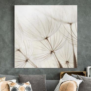 Stampa su tela - Gentle Grasses - Quadrato 1:1