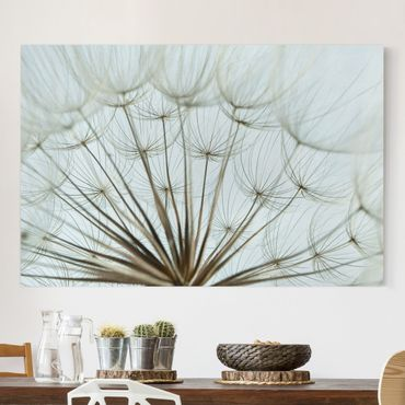 Stampa su tela - Beautiful dandelion macro shot - Orizzontale 3:2