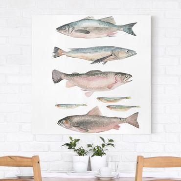 Stampa su tela - Sette Pesce in acquerello I - Quadrato 1:1
