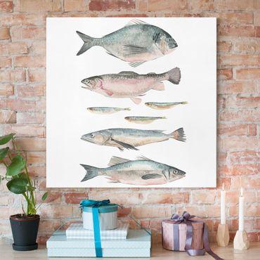 Stampa su tela - Sette pesce in acqua di colore II - Quadrato 1:1