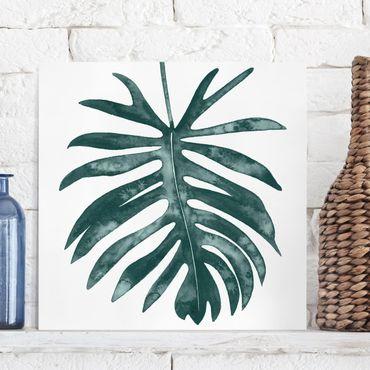 Stampa su tela - Emerald Philodendron Angustisectum - Quadrato 1:1