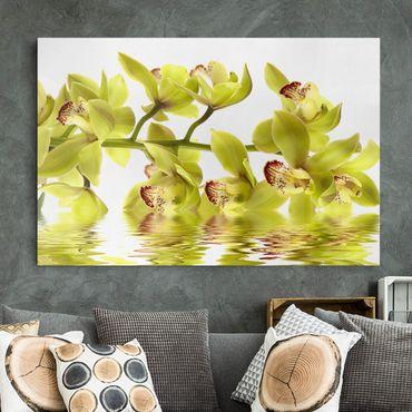 Stampa su tela - Splendid Orchid Waters - Orizzontale 3:2
