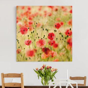 Stampa su tela - Summer Poppies - Quadrato 1:1