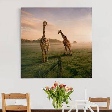 Stampa su tela - Surreal Giraffes - Quadrato 1:1