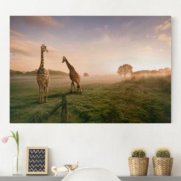 Stampa su tela - Surreal Giraffes - Orizzontale 3:2