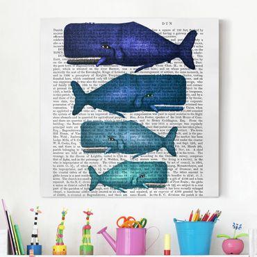 Stampa su tela - Lettura di animali - Famiglia Whale - Quadrato 1:1